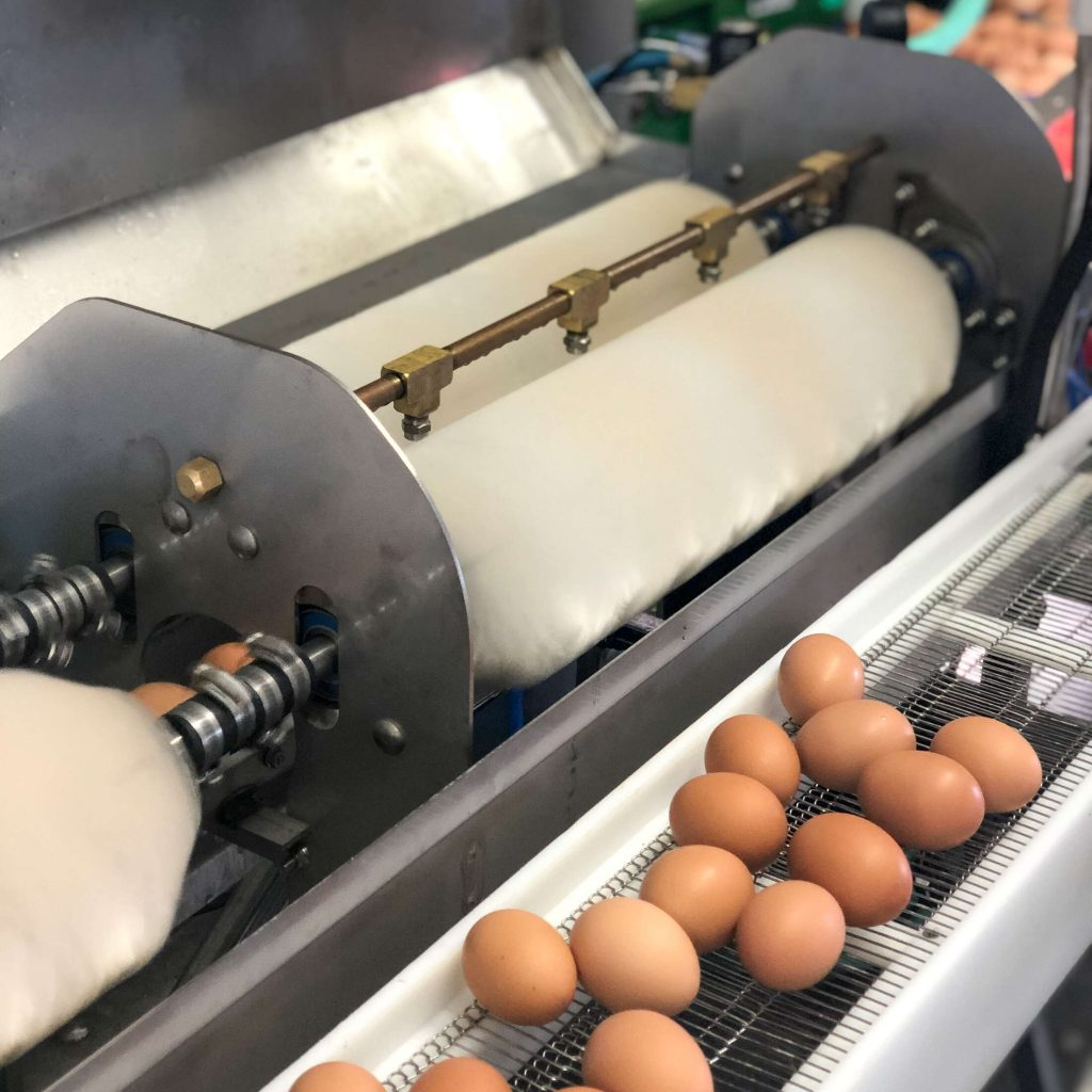 Fast operation of a Power Scrub Egg Washer