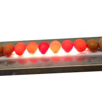 LED Egg Candler to inspect the eggs before you wash them.