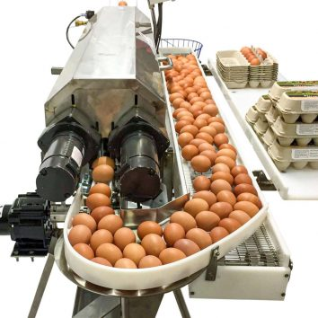 Turn table side conveyor Power Scrub Egg Washer